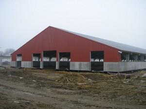 Zdjęcie hali w trakcie budowy (zdjęcie umieszczono za uprzejmą zgodą formy Conexx sp z o.o.)